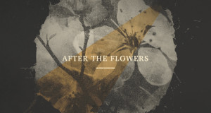 after the flowers cover